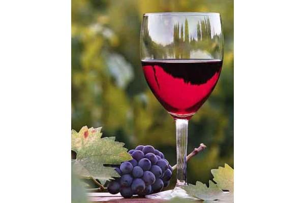 Cách làm rượu vang từ trái cây