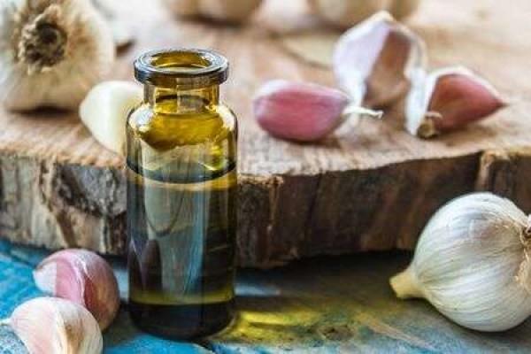 Tác dụng của tinh dầu tỏi là gì? Tìm hiểu quy trình chiết xuất tinh dầu tỏi truyền thống chất lượng cao
